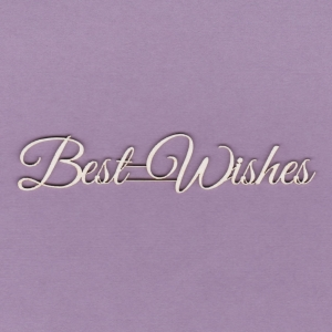 817 Tekturka napis - Best Wishes - G2